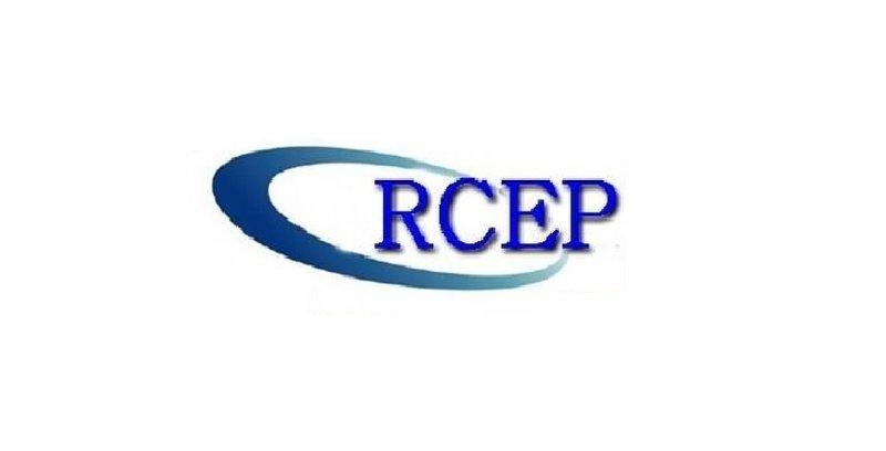 NGO gesa kerajaan tidak terburu-buru muktamadkan RCEP