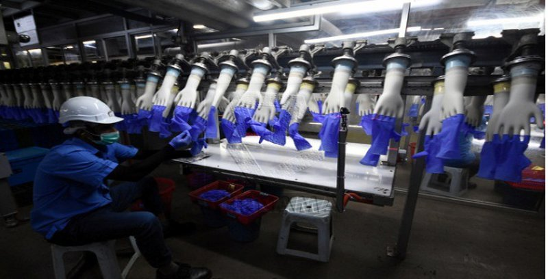 Kekurangan tenaga buruh jejas eksport sarung tangan getah Malaysia